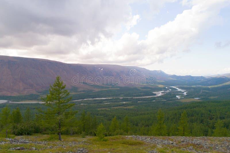 Widok szloch Rzeczna dolina na chmurnym Sierpniowym dniu Biegunowe Ural góry, Rosja fotografia stock