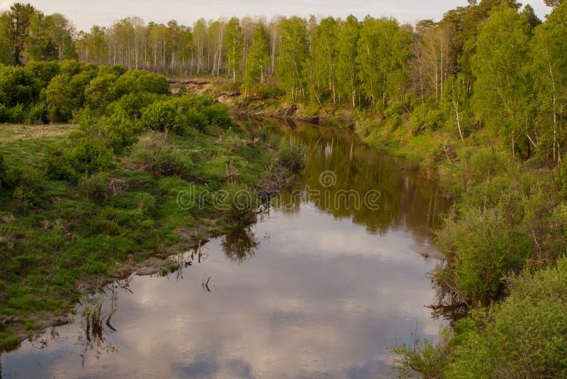 Widok tajga Syberyjski rzeczny Vagai niebieska spowodowana pola pe?ne si? chmura dzie? zielonych ro?lin krajobrazu ruchu pokaz ma fotografia stock