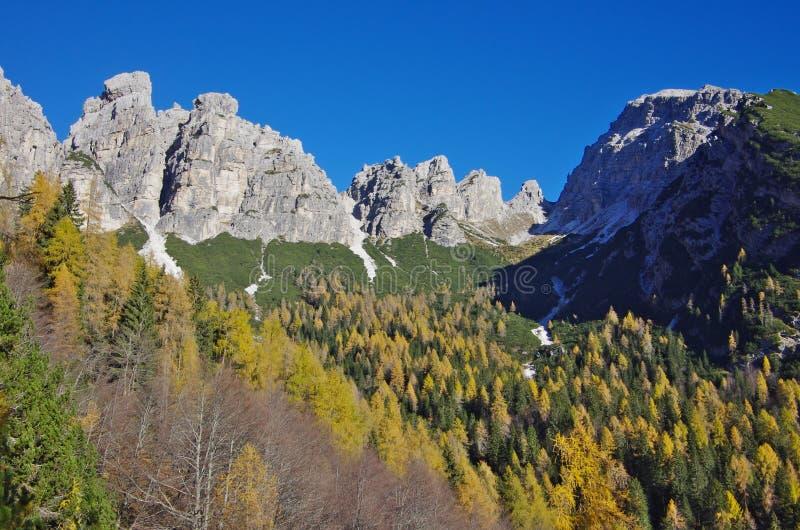 Widok Val Campestrin i Sassolungo Di Cibiana dolomity obrazy stock