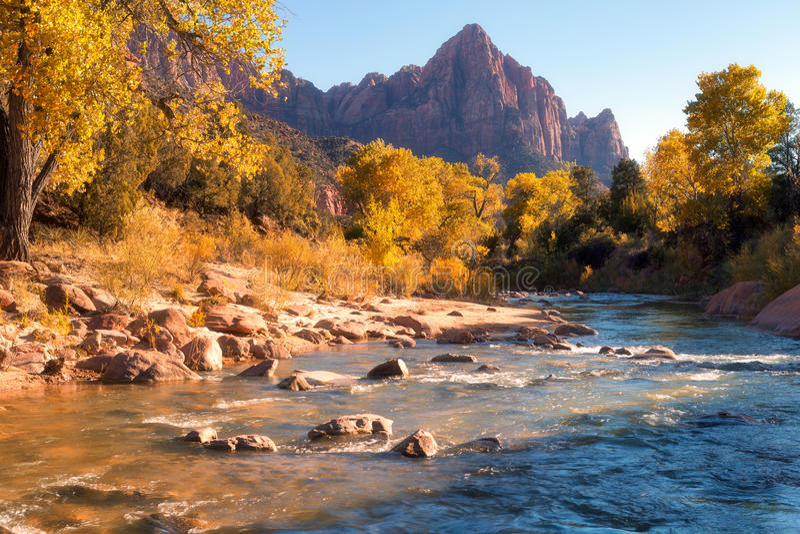 Widok Watchman góra i dziewicza rzeka w Zion Natio fotografia stock