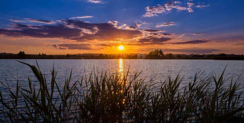 Widok wieczór zmierzch nad jezioro przez nabrzeżnej trawy zachód słońca nad rzeką zdjęcia stock