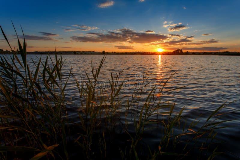 Widok wieczór zmierzch nad jezioro przez nabrzeżnej trawy zachód słońca nad rzeką obrazy stock