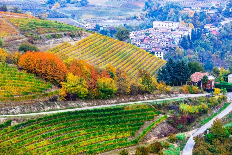 Widok winnicy i wioski w jesieni barwi w Północnym Włochy fotografia stock