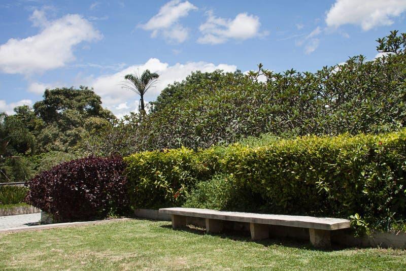 Widok wschodu park, Caracas fotografia stock