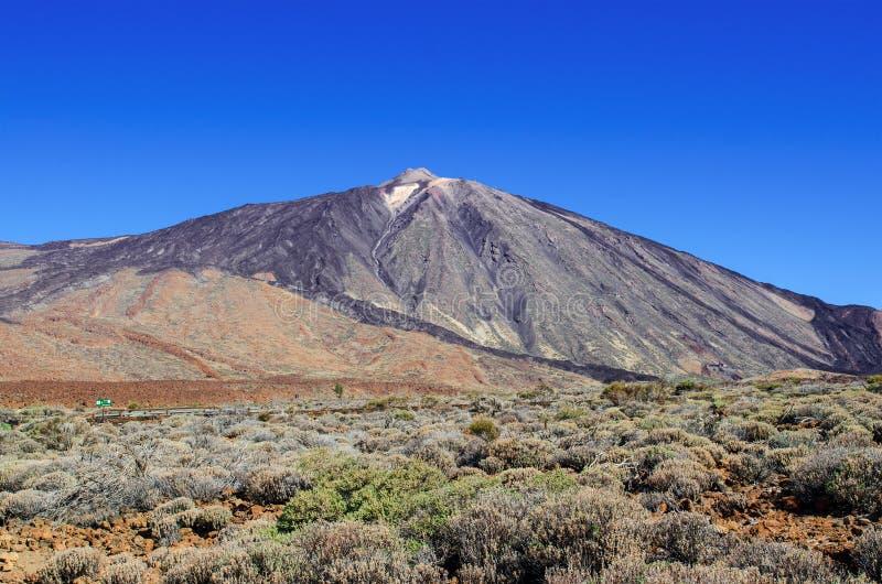 Widok wulkan góry Teide Teide szczyt, otoczenia z wzmacniającą lawową i bezdrzewną halną roślinnością obraz royalty free