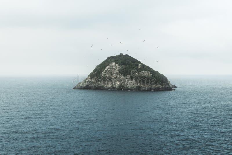 Widok wyspa Bergeggi w Liguria, Włochy otaczał dennymi frajerami w ranek mgle obrazy stock