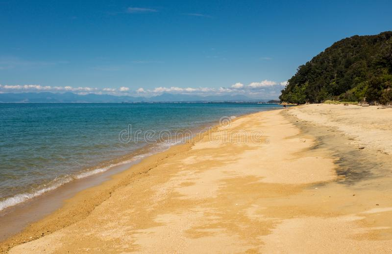 Widok wzdłuż jeden wiele złote plaże przy niesamowicie pięknym Sprawnie Tasman parkiem narodowym, Południowa wyspa, Nowa Zelandia obraz stock