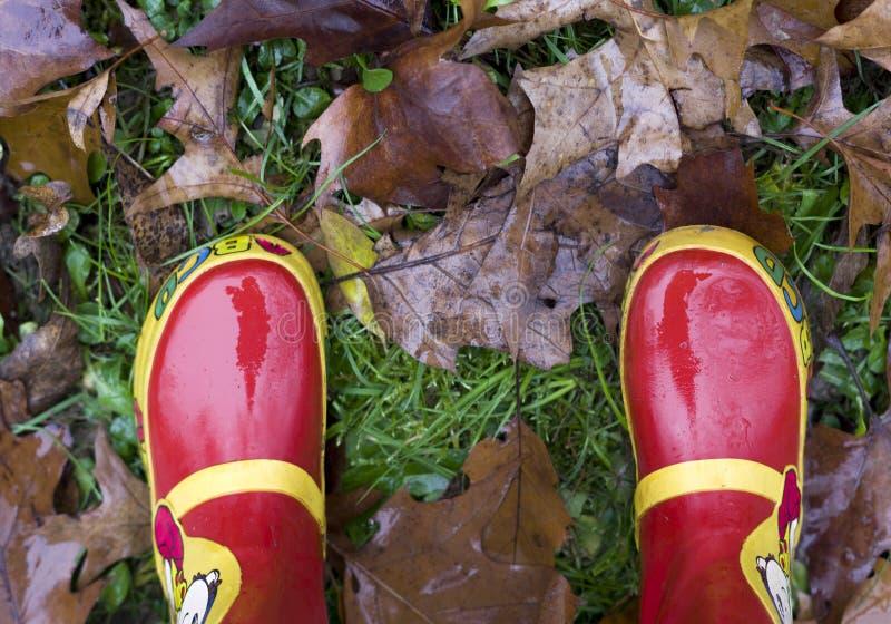 Widok z góry, zbliżenie dzieci czerwone buty na jesiennych spadłych liściach zdjęcie stock