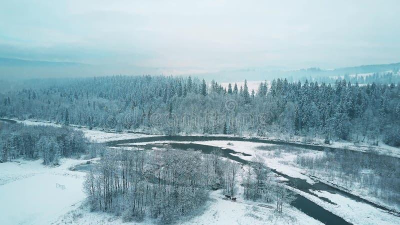Widok z lotu ptaka śnieżny las i mała rzeka w zimie Tatrzańskie góry, Polska zdjęcie royalty free