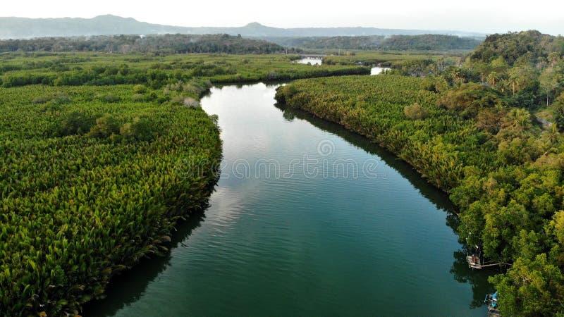 Widok z lotu ptaka, Abatan, rzeka, filipińczyk fotografia stock