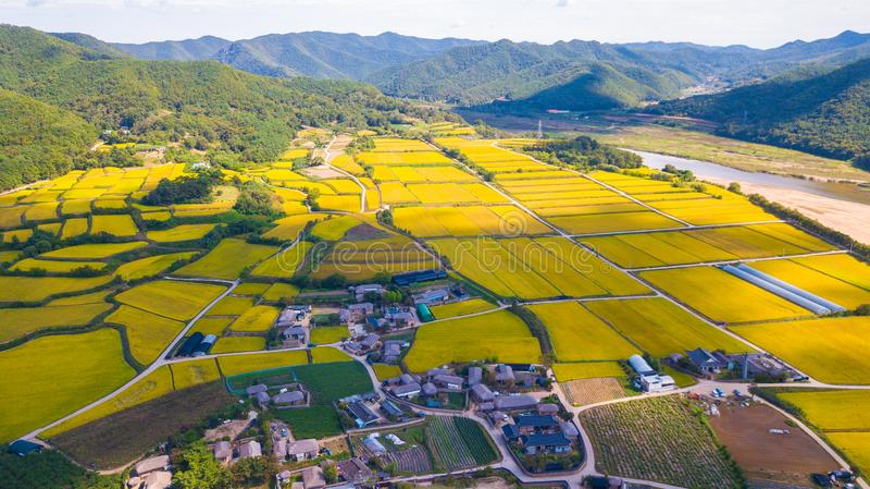 Widok z lotu ptaka Andong, Hahoe wioska w Południowym Korea Hahoe willa fotografia stock