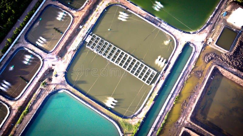 Widok z lotu ptaka garneli gospodarstwo rolne i powietrza purifier w Tajlandia Continu obrazy royalty free