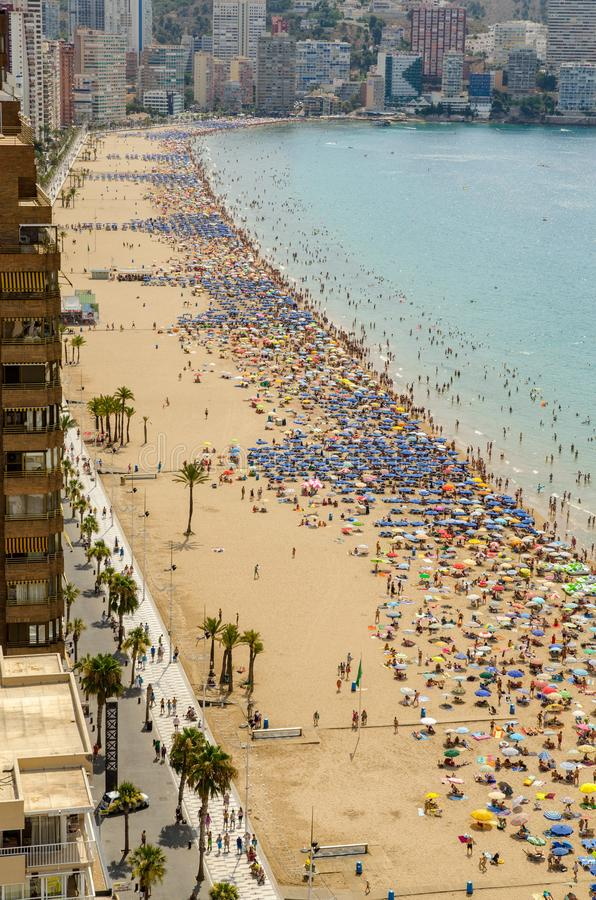 Widok z lotu ptaka Levante plaża w Benidorm, Alicante, Hiszpania obraz stock