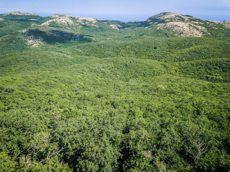 Widok z lotu ptaka morze w lecie i góry, urlopowy nastrój, krajobraz zdjęcia royalty free