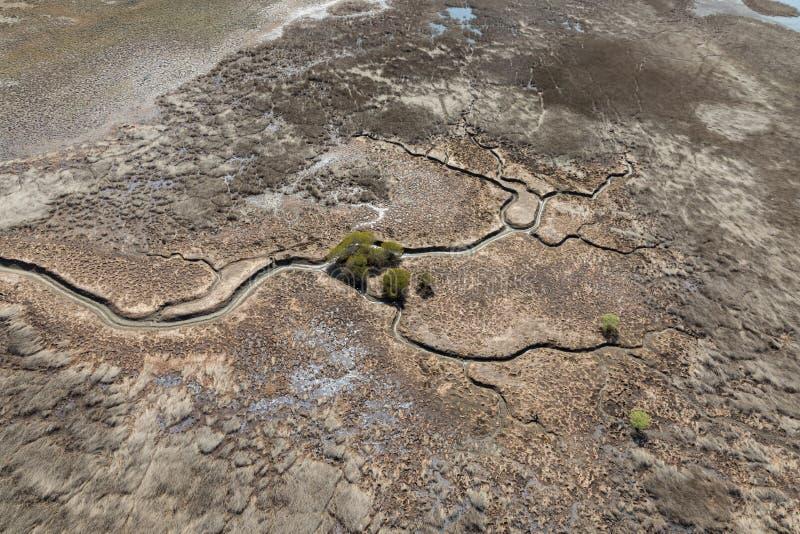Widok z lotu ptaka na płaską linię brzegową przy niskim odpływie, z odlewem przechodzącym przez błoto i namorzyny zdjęcia stock