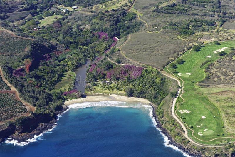Widok z lotu ptaka na południowe wybrzeże Kauai pokazujący plantacje kawy w pobliżu Poipu Kauai Hawaii USA obraz stock