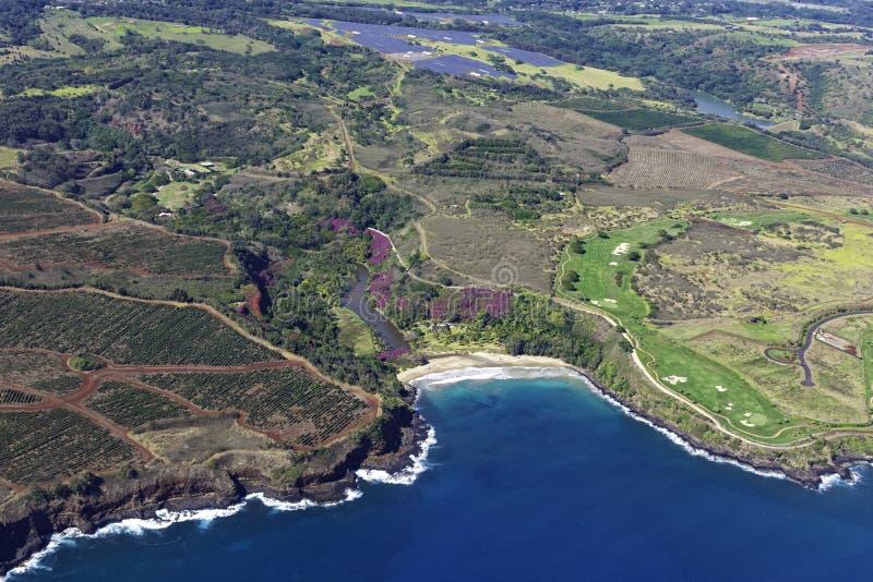 Widok z lotu ptaka na południowe wybrzeże Kauai pokazujący plantacje kawy w pobliżu Poipu Kauai Hawaii USA obrazy stock