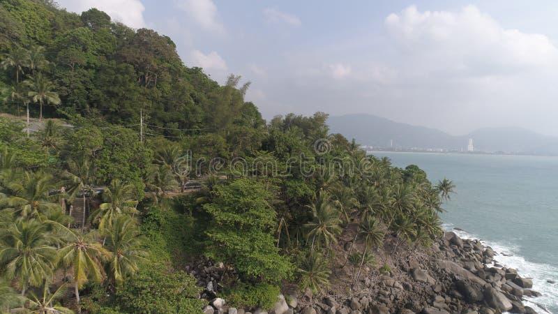 Widok z lotu ptaka nad drzewkami palmowymi, skałami i morzem w Phuket, fotografia royalty free