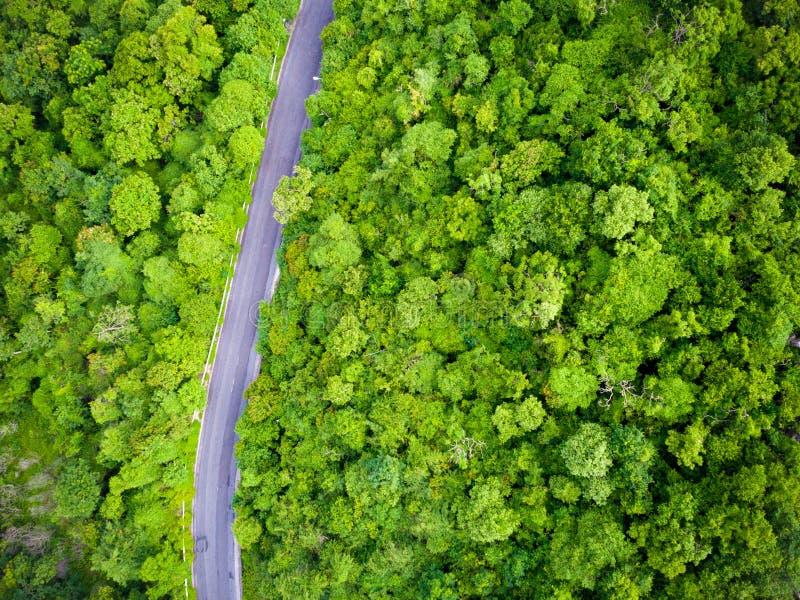 Widok z lotu ptaka nad lasowej drogi krajobrazem zdjęcia stock