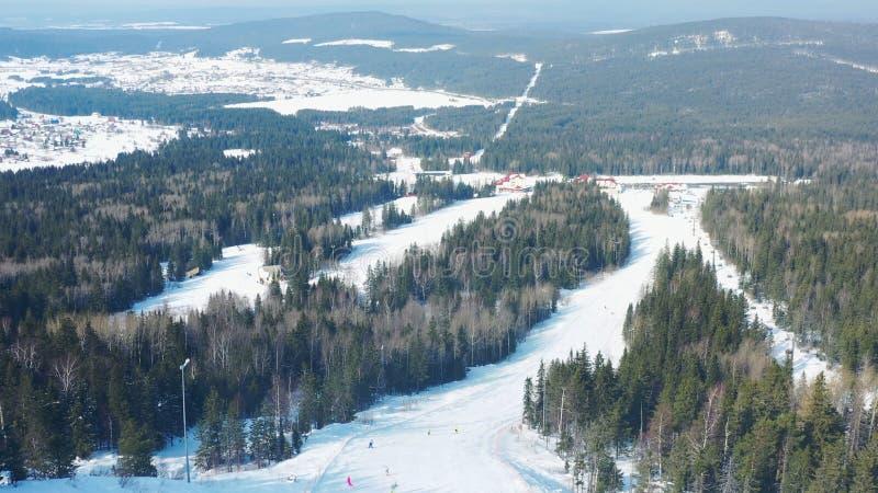 Widok z lotu ptaka narciarski sk?on i ludzie jazdy na snowboardzie na narcie tropimy z iglastymi drzewami od oba stron? ?lad zdjęcie stock