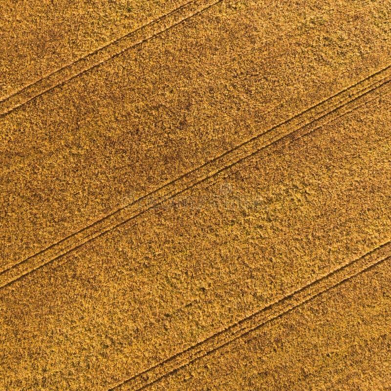 Widok z lotu ptaka pole z jesieni żniwem zdjęcia stock