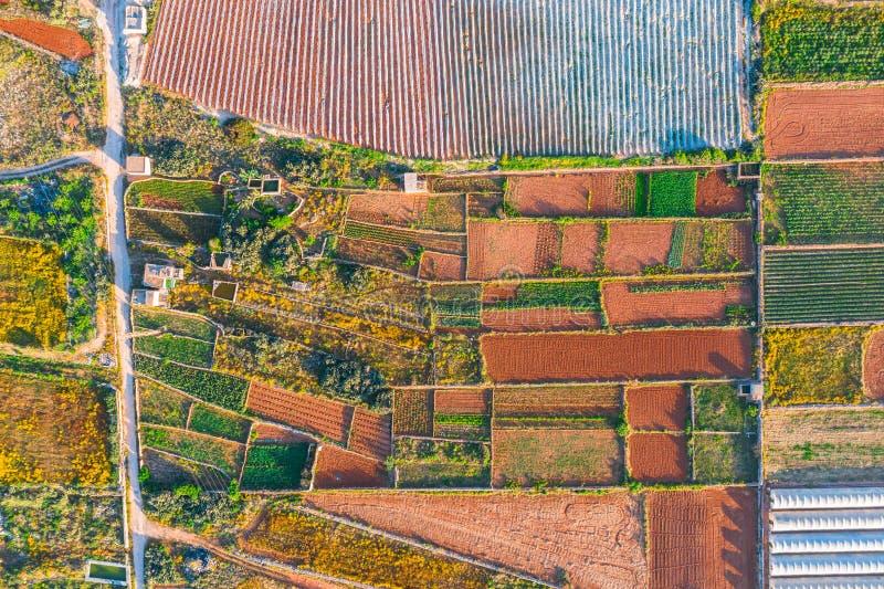 Widok z lotu ptaka różnorodni pola uprawy i szklarnie Pojęcie przemysłowy kompleks obraz royalty free