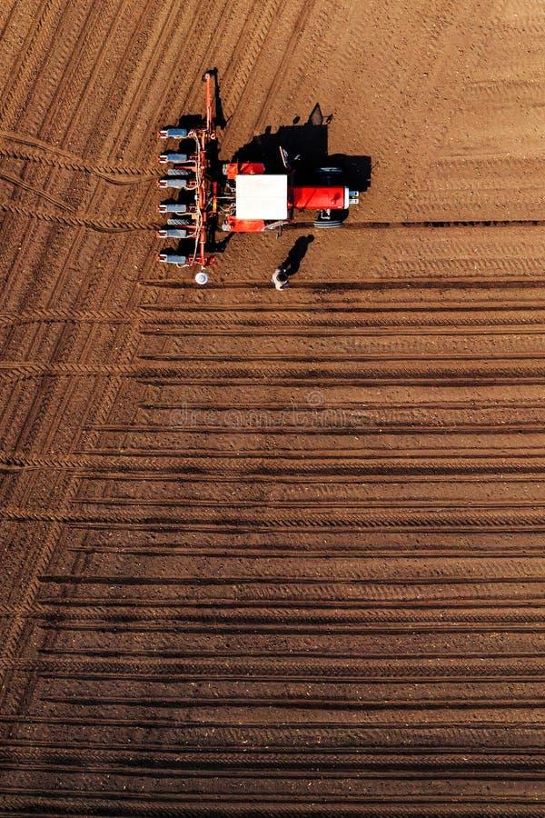 Widok z lotu ptaka rolnik i ciągnik z uprawa ikrzakiem zdjęcie stock