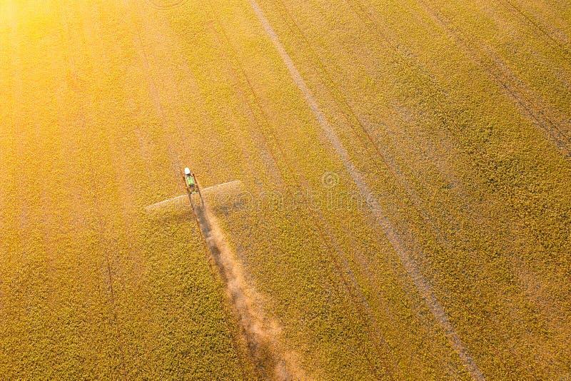 Widok z lotu ptaka rolny ciągnik w żółtym polu podczas opryskiwania i dla narastającego jedzenia, warzyw i owoc na indyjskim leci obrazy stock