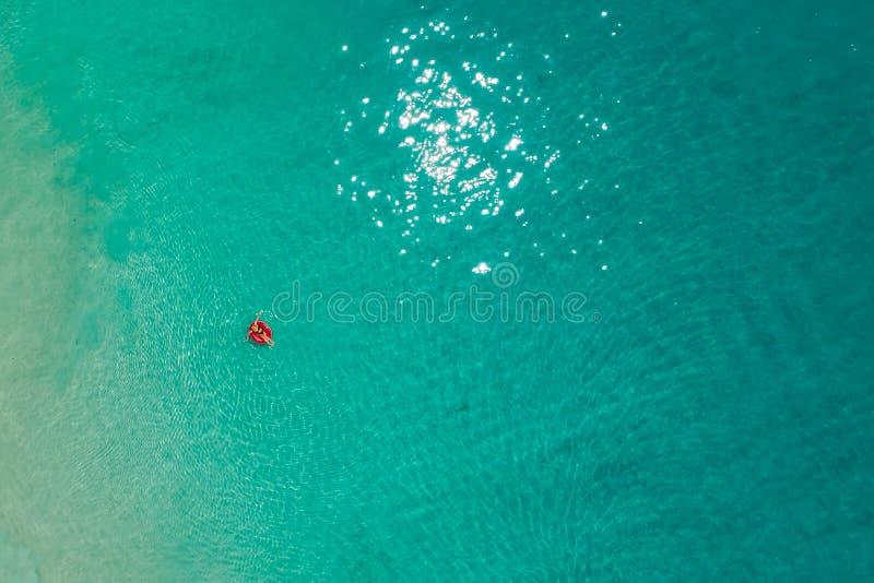 Widok z lotu ptaka szczupły kobiety dopłynięcie na pływanie pierścionku pączku w przejrzystym turkusowym morzu w Seychelles Lata  fotografia stock
