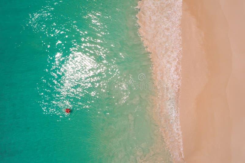 Widok z lotu ptaka szczup?y kobiety dop?yni?cie na p?ywanie pier?cionku p?czku w przejrzystym turkusowym morzu w Seychelles Lata  obrazy stock