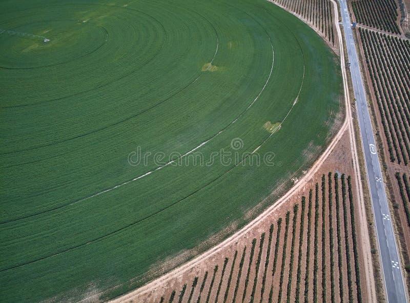 Widok z lotu ptaka uprawy pole z kółkowym pivot irygacji kropidłem fotografia stock