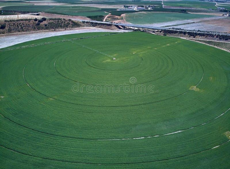 Widok z lotu ptaka uprawy pole z kółkowym pivot irygacji kropidłem fotografia royalty free