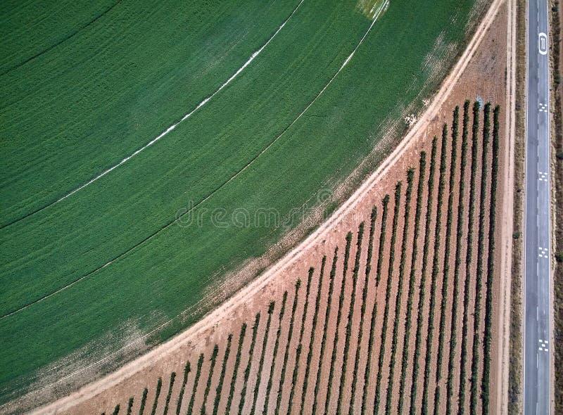 Widok z lotu ptaka uprawy pole z kółkowym pivot irygacji kropidłem obrazy royalty free