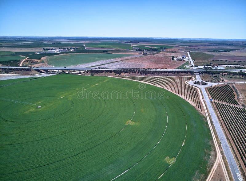 Widok z lotu ptaka uprawy pole z kółkowym pivot irygacji kropidłem zdjęcia stock