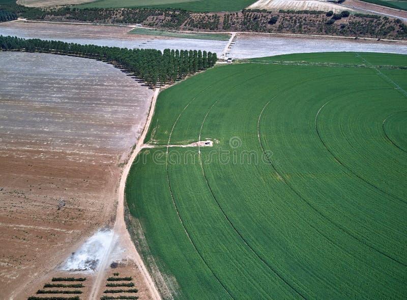Widok z lotu ptaka uprawy pole z kółkowym pivot irygacji kropidłem zdjęcie royalty free