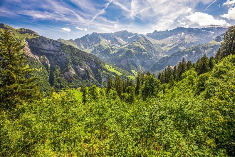 Widok z lotu ptaka wiąz wioska i szwajcar góry - Piz Segnas, Piz Sardona, Laaxer Stockli od Ampachli, Glarus, Szwajcaria, Europ zdjęcie royalty free