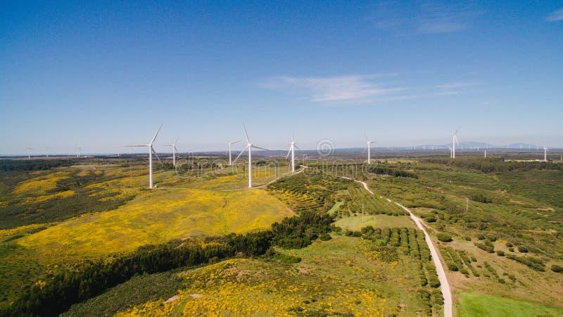 Widok z lotu ptaka Wiatrowe Wytwarza stacje w zieleni polach na tle niebieskie niebo Portugalia fotografia stock