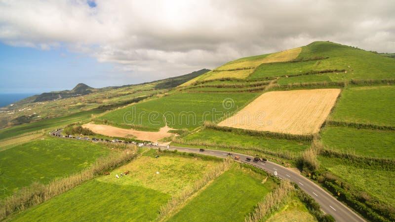 Widok z lotu ptaka wiejski krajobraz Sao Miguel wyspa z krowami Azores Portugalia obraz stock