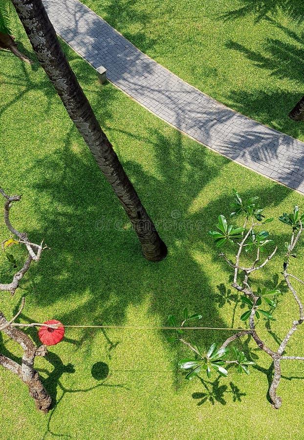Widok z lotu ptaka zielony gazon i przejście fotografia stock