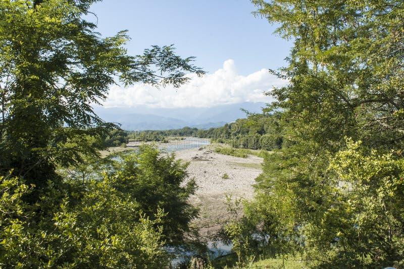 Widok za od drzew zdjęcie royalty free