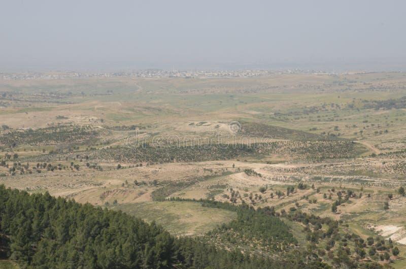 Widok zalesiony góra krajobraz w Jerozolimskim terenie zdjęcie stock