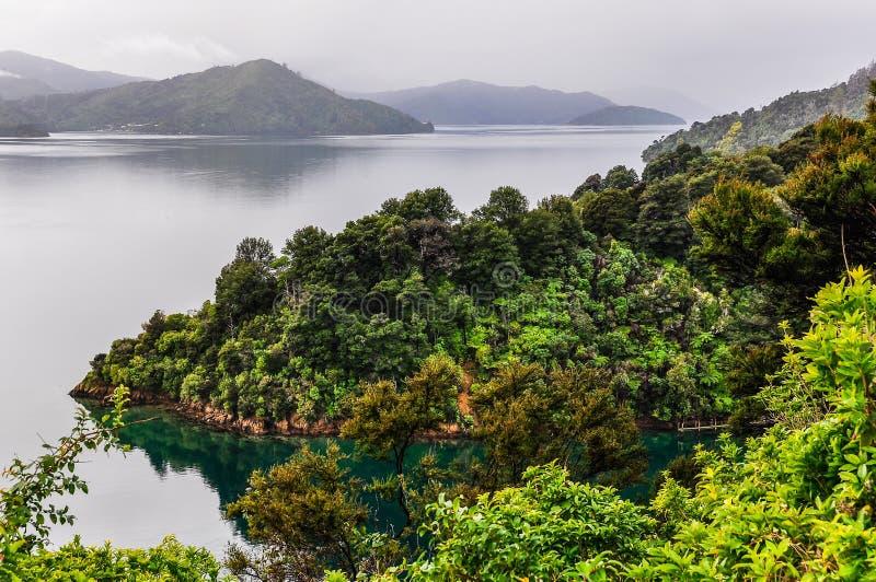 Widok zatoki w królowej Charlotte drodze, Nowa Zelandia zdjęcie stock