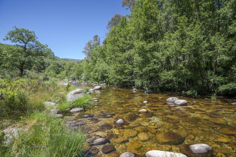 Widoki Minchones strumień zdjęcia stock