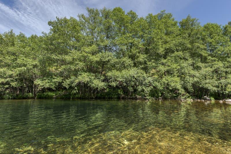 Widoki Minchones strumień fotografia stock
