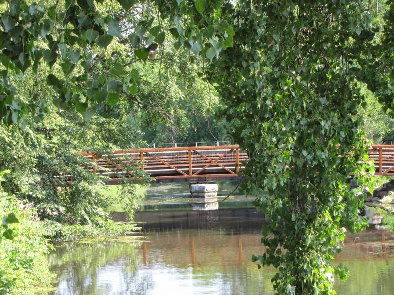 Widoki most nie od go, obrazy stock