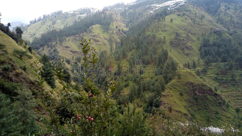 Widoku górskiego Shimla wzgórza obraz royalty free