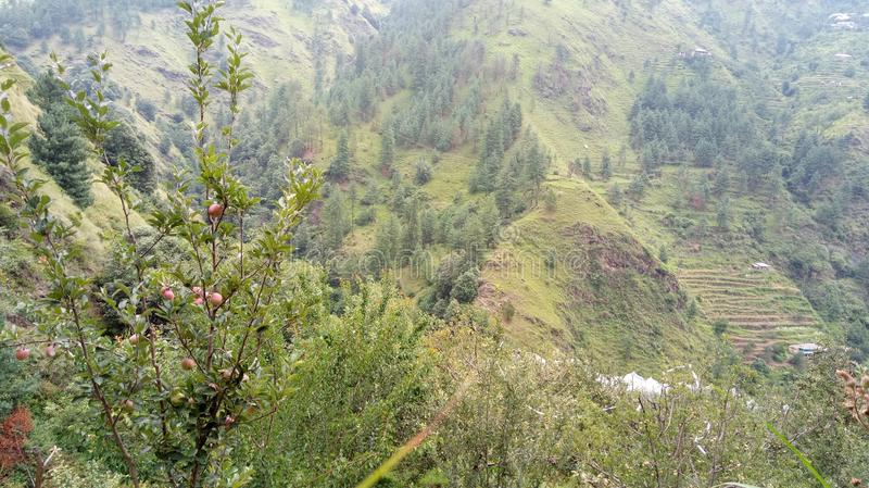 Widoku górskiego Shimla wzgórza zdjęcie royalty free