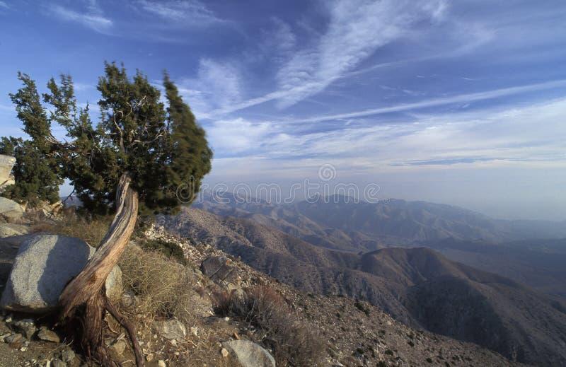 Widoku punkt przy Joshua drzewa parkiem narodowym, Kalifornia, zabytek, obraz royalty free