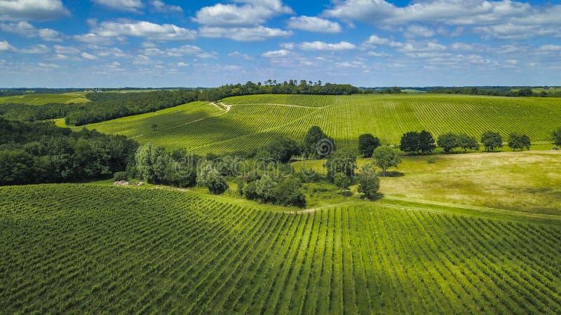 Widoku z lotu ptaka Bordoski winnica w lecie, Entre deux mers fotografia stock