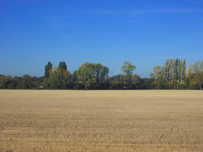 Wieś blisko Cambridge zdjęcia royalty free